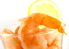 Cocktail de camarão Fotografia de Stock