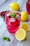 Cocktail de canneberge Image libre de droits