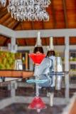 Cocktail de couleur rouge dans le verre au compteur de barre à la station de vacances tropicale photographie stock