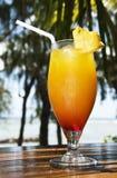 Cocktail de fruta fresca em um console tropical Foto de Stock