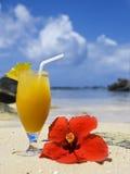 Cocktail de fruta fresca em um console tropical Fotografia de Stock
