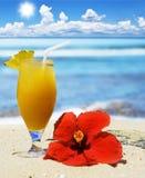 Cocktail de fruta tropical na praia Foto de Stock Royalty Free
