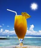 Cocktail de fruta tropical na praia Fotos de Stock Royalty Free