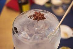 Cocktail de genièvre de Brockmans photos libres de droits