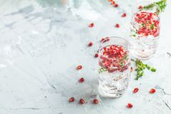 Cocktail de genièvre et de grenade de tonique ou eau de detox avec de la glace image libre de droits