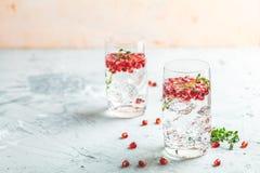 Cocktail de genièvre et de grenade de tonique ou eau de detox avec de la glace photos stock