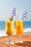 Jus d'ananas, de mangue et de passiflore comestible de passiflore Images libres de droits