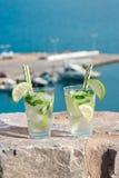 Cocktail de l'eau de seltz de boissons d'été Photo libre de droits