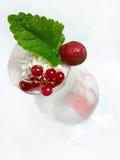 Cocktail de lait Photos libres de droits