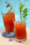 Cocktail de Mary sangrenta Foto de Stock Royalty Free