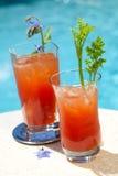 Cocktail de Mary sangrenta Imagens de Stock