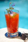 Cocktail de Mary sangrenta Imagem de Stock Royalty Free