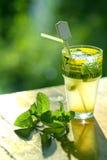 Cocktail de Mojito photographie stock