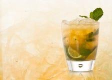 Cocktail de Mojito Fotografia de Stock Royalty Free