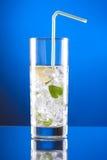 Cocktail de Mojito Imagens de Stock