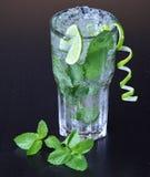 Cocktail de Mojito imagem de stock royalty free