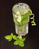 Cocktail de Mojito avec le leav en bon état Photo libre de droits