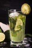 Cocktail de Mojito dans un long verre Photos libres de droits