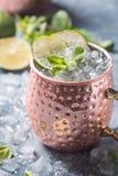 Cocktail de mule de Moscou photographie stock libre de droits