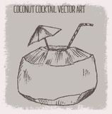 COCKTAIL DE NOIX DE COCO, AVEC L'ILLUSTRATION DE VECTEUR DE GRIFFONNAGE OU LE FOND Images libres de droits