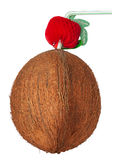 Cocktail de noix de coco d'isolement sur un fond blanc Photographie stock