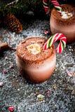 Cocktail de Pôle Nord de Noël Images libres de droits