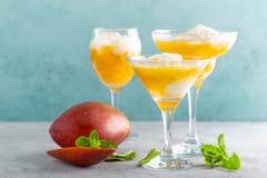 Cocktail de refrescamento da manga do verão com suco e gelado frescos fotos de stock royalty free