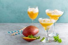Cocktail de refrescamento da manga do verão com suco e gelado frescos imagem de stock royalty free