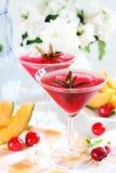 Cocktail de refrescamento do verão Imagem de Stock Royalty Free