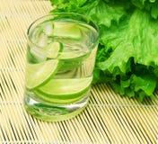 Cocktail de vitamine dans une glace Photo libre de droits