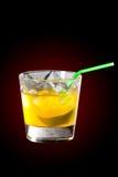 Cocktail del limone Fotografia Stock Libera da Diritti