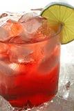 Cocktail del mirtillo Fotografia Stock