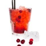 Cocktail del mirtillo rosso Fotografie Stock