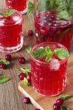 Cocktail del mirtillo rosso con la menta ed il ghiaccio Fotografie Stock Libere da Diritti