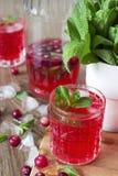 Cocktail del mirtillo rosso con la menta ed il ghiaccio Fotografia Stock