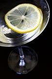Cocktail dell'agrume Fotografia Stock Libera da Diritti