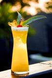 Cocktail dell'ananas di tramonto Fotografie Stock Libere da Diritti