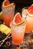 Cocktail dell'ananas e del pompelmo fotografia stock libera da diritti