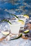 Cocktail della margarita di vera dell'aloe con l'orlo salato sulla tavola di marmo Immagini Stock