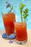 Cocktail della Mary sanguinante Fotografia Stock Libera da Diritti