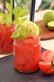 Cocktail della Mary sanguinante Fotografie Stock Libere da Diritti