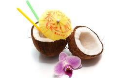 Cocktail della noce di cocco Immagine Stock Libera da Diritti