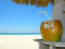 Cocktail della noce di cocco della spiaggia Fotografia Stock Libera da Diritti