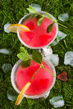 Cocktail der roten Farbe Lizenzfreies Stockbild