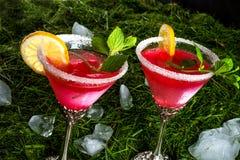 Cocktail der roten Farbe Stockbilder