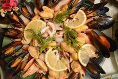 Cocktail des fruits de mer Image stock