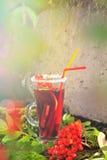 Cocktail des Herbstes Stockfotografie