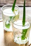 Cocktail di aloe Vera e del succo della noce di cocco Fotografie Stock