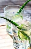 Cocktail di aloe Vera e del succo della noce di cocco Fotografia Stock