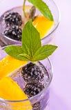 Cocktail di Blackberry Immagine Stock Libera da Diritti